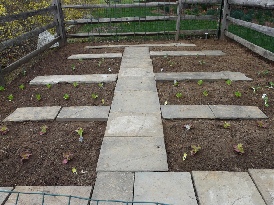 Garden Walkways By Vegetable Gardens 4 U   Garden Layout, Design, And  Mentorship In Chester County, PA   We Will Design And Build A Vegetable  Garden For You ...