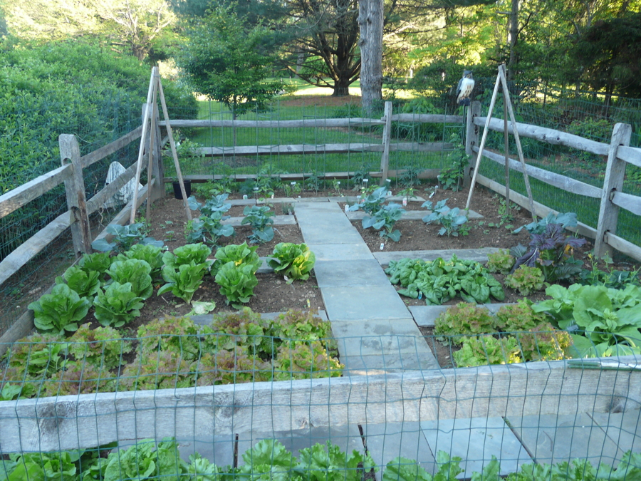 Beau Garden Walkways By Vegetable Gardens 4 U   Garden Layout, Design, And  Mentorship In Chester County, PA   We Will Design And Build A Vegetable  Garden For You ...